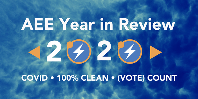 AEE Year in Review 2020 (4) (1)