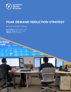 Download the peak demand reduction strategy report
